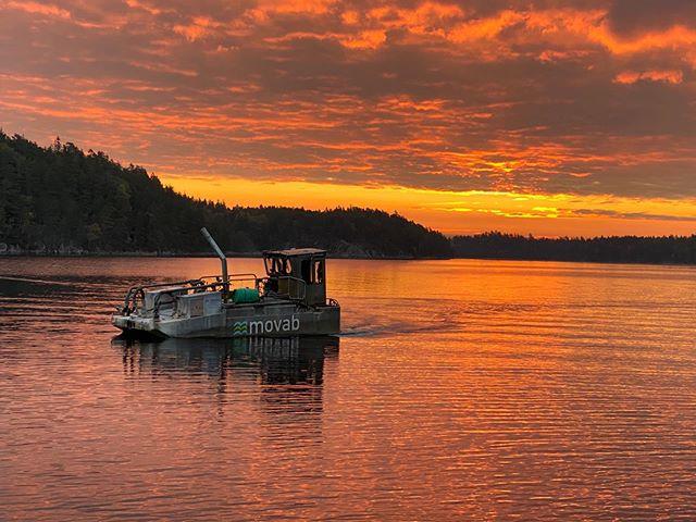 Vårt vackra Sverige, Br Allerts på kalkuppdrag en fin sommarkväll.
